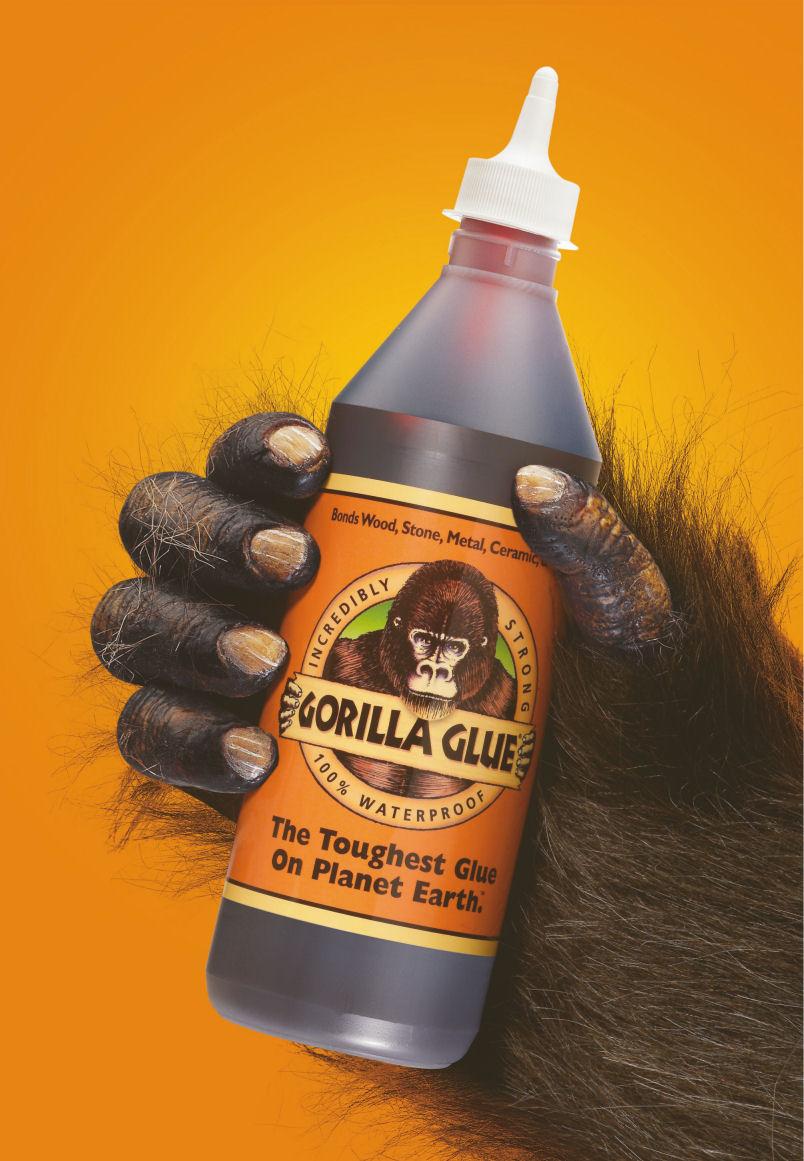 The Gorilla Glue of Unity – Hidden Trails
